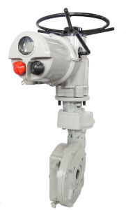 Electric Multi-Turn Actuator for Golbe Valve (CKD120/JW550) pictures & photos