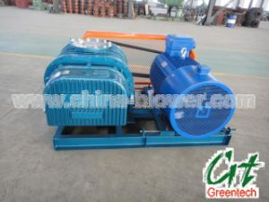 Gas Blowers Air Blower pictures & photos