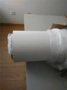 Expanded PTFE Sheet with High Quality Good Price pictures & photos