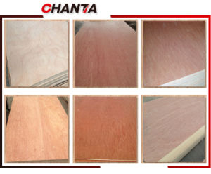 a Grage Poplar Veneer From Chanta Group pictures & photos