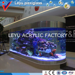 Big Size Acrylic Fish Tank for Hotel Project