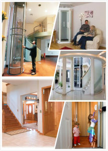 Home Elevator/Lift with Automatic Rescue Device (ARD) pictures & photos
