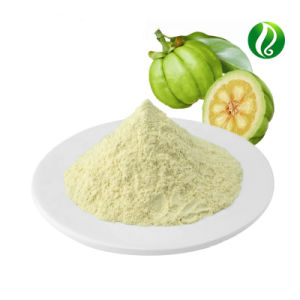 China Garcinia Cambogia Fruit Extract Powder Free Sample China Garcinia Cambogia Extract Garcinia Cambogia Extract Pure