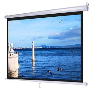 80inch Manual Projector Screen with Lock pictures & photos