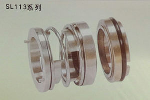Mechanical Seal for Kettle (Type SL113)