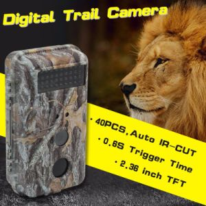 High Quality and High Resolution SD Card Field Recording Camera