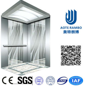 AC-Vvvf Drive Home Lift/Elevator with German Technology (RLS-124)