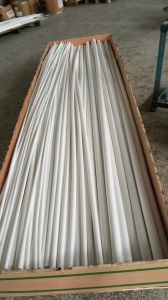 Moulding Moulded Rods, Round PVC Bar, Plastic Rods PTFE/Teflon pictures & photos