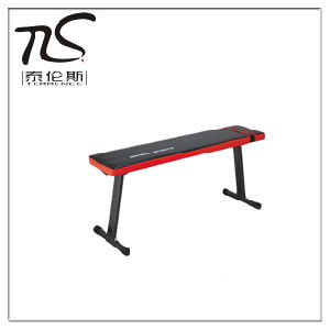 Dumbbell Bench-Flat Bench