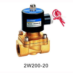 Large Size Solenoid Valve (2W/2S Series)