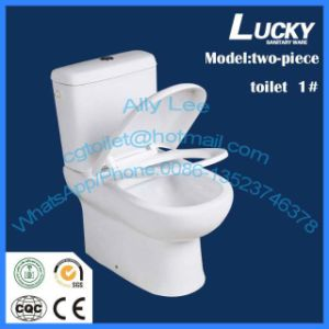 Wc European Style Two-Piece Toilet Back to Wall Toilet Jx-1# pictures & photos