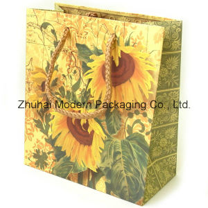 Custom Logo Offset Printing Paper Bag with Handle pictures & photos