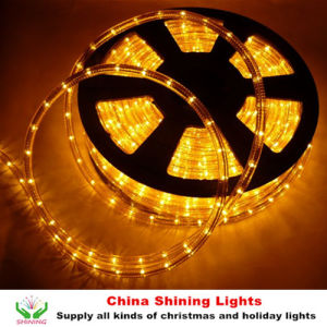 China classic traditional christmas holiday led rope light in varis classic traditional christmas holiday led rope light in varis colors good quality cheap price aloadofball Choice Image