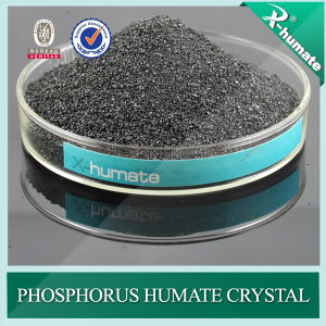 Fine Cyrstal Powder Form Potassium Humate From Leonardite pictures & photos