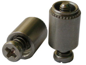 Screw Head Panel Fastener Assemblies with Small Head