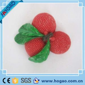 OEM Resin Litchi Fridge Magnet fruit Magnet pictures & photos