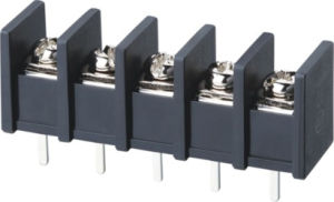 10.0mm Pitch Barrier Terminal Block Connector (WJ55S) pictures & photos