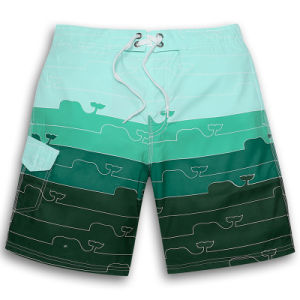 Tropical Island Quick Dry Board Swim Shorts for Men pictures & photos