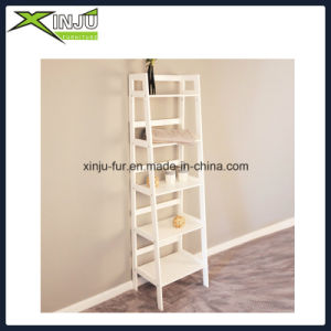 5 Tier Wooden Shelf with Nc Painting