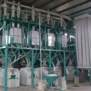 Grain Flour Milling Machine for Wheat/Maize/Corn (6FTF)