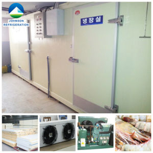- 20 to -30 Centi-Degree Refrigerator Freezer for Seafood