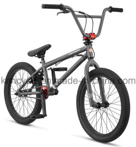 20 Inch Hi-Ten Frame BMX Bike/ Bicicleta/ Dirt Jump BMX/ Sy-Fs2096 pictures & photos