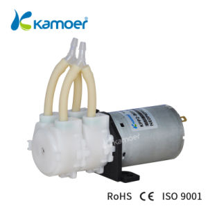Kamoer Kpp2 Double Pump Heads Mini Dosing Watering Precision Peristaltic Pump