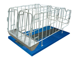 Sow Galvanized Gestation Stall/Pig Farming Facilities pictures & photos