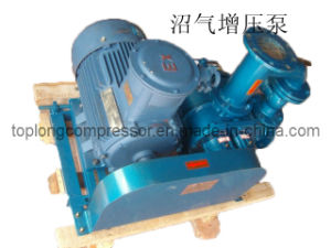Marsh Gas Compressor Methane Compressor Biogas Compressor (TDS Series) pictures & photos