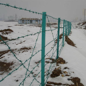 Low Price Galvanized&PVC Coated Barbed Wire Fencing