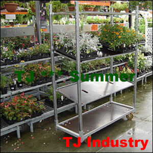 Flower Display Carts pictures & photos