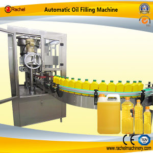 Autoamtic Palm Oil Producting Facility pictures & photos