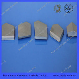 Cemented Carbide Pieces for Coal-Cutting pictures & photos
