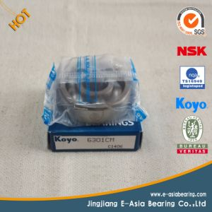 Bearing Manufacturers Ball Bearings pictures & photos