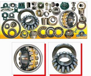Shandong Xsy Bearing Various Type for Panama, Mexico and Africa pictures & photos