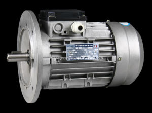Ms Three Phase Electric Induction Motor pictures & photos
