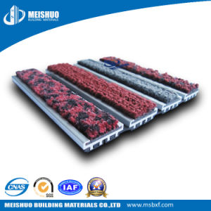 Hotel Entrance Mat in Building Materials (MS-990) pictures & photos
