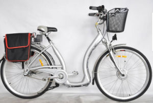 My Electric Bicycle