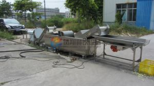 Automatic Vegetable Cabbage Spinach Washing Cutting Dewatering Processing Production Line pictures & photos