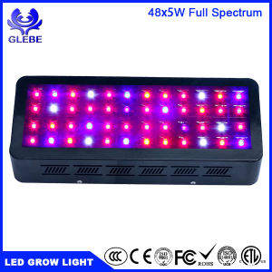 Glebe 240W LED Grow Light Full Spectrum for Indoor Plants Veg and Flower pictures & photos
