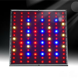LED Grow Light 45W