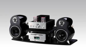Hybrid Vacuum Tube Amplifier for iPod (DT-307)