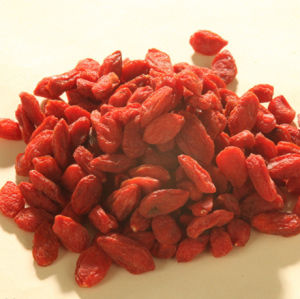 Most Best Delicious Organic Goji Berry Wolfberry