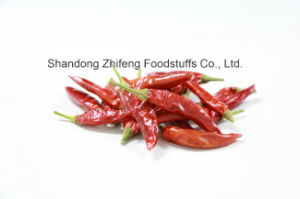 Dehydrated Red Chilli with Good Price pictures & photos