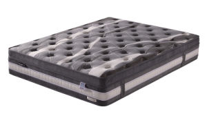 Home Mattress of Euro Top (NL-1705)