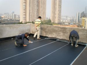 Sbs Modified Bitumen Waterproof Membrane / Flat Roofing Waterproofing Material pictures & photos