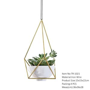 China Lowest Price Hanging Geometric Terrarium Factory Direct Sell