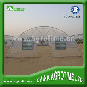 Economic Tunnel Film Greenhouses (CMR3810)