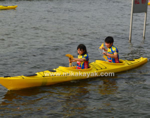 Sea Kayak Canoe For Sale Double Sit In M16