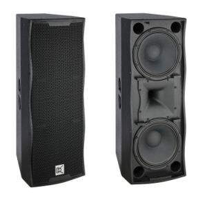 PRO Audio Equipment Dual 12 Inch PA Speaker pictures & photos